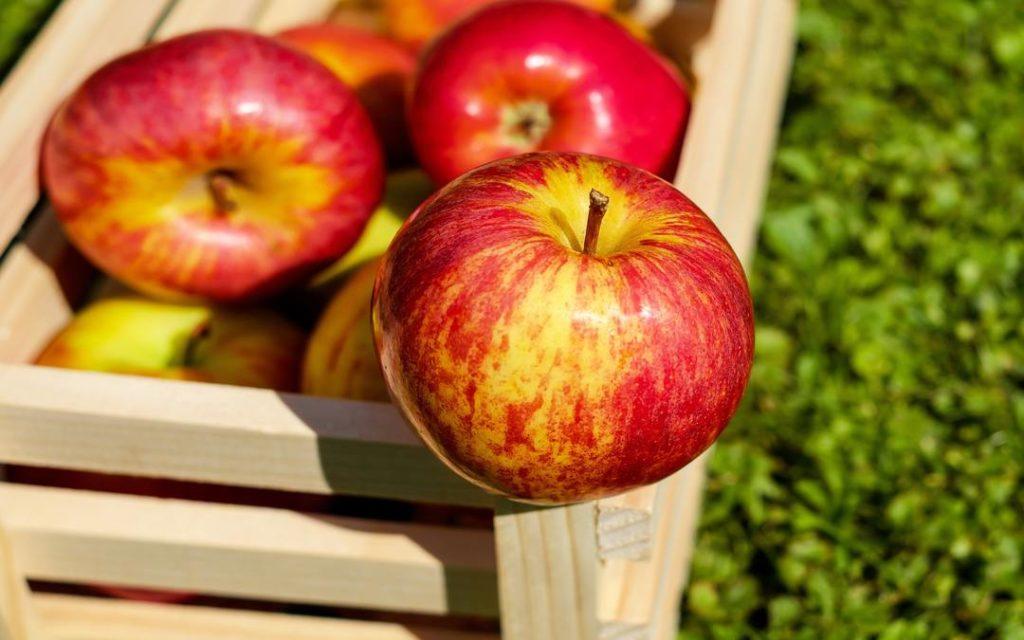 autumn apples, an apple a day, apple season, apple desserts, Suesey Street