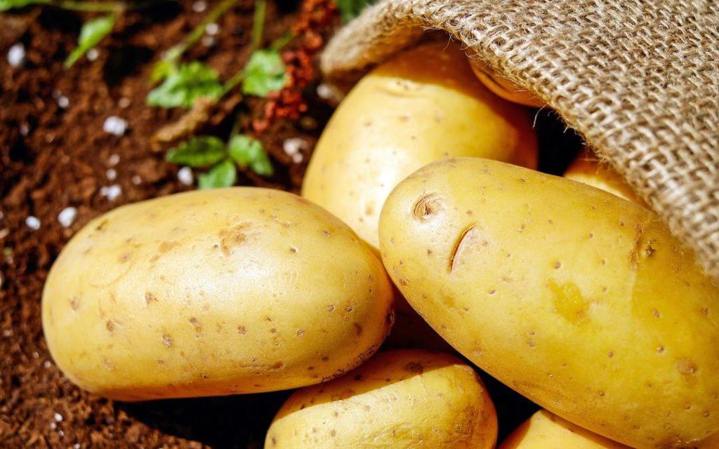 organic potatoes, local producers, seasonal ingredients, Suesey Street